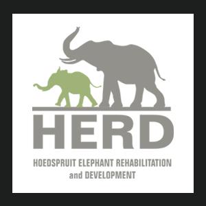 Logo Herd association éléphant